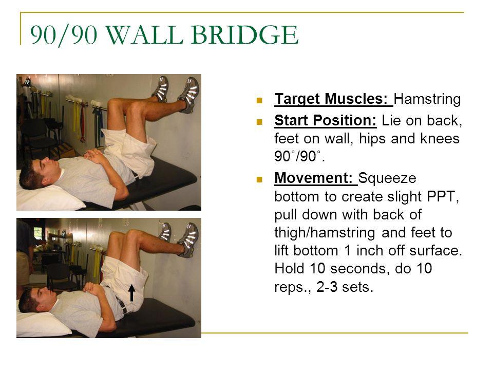 90/90 WALL BRIDGE Target Muscles: Hamstring