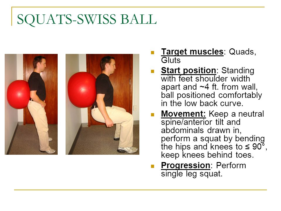 SQUATS-SWISS BALL Target muscles: Quads, Gluts