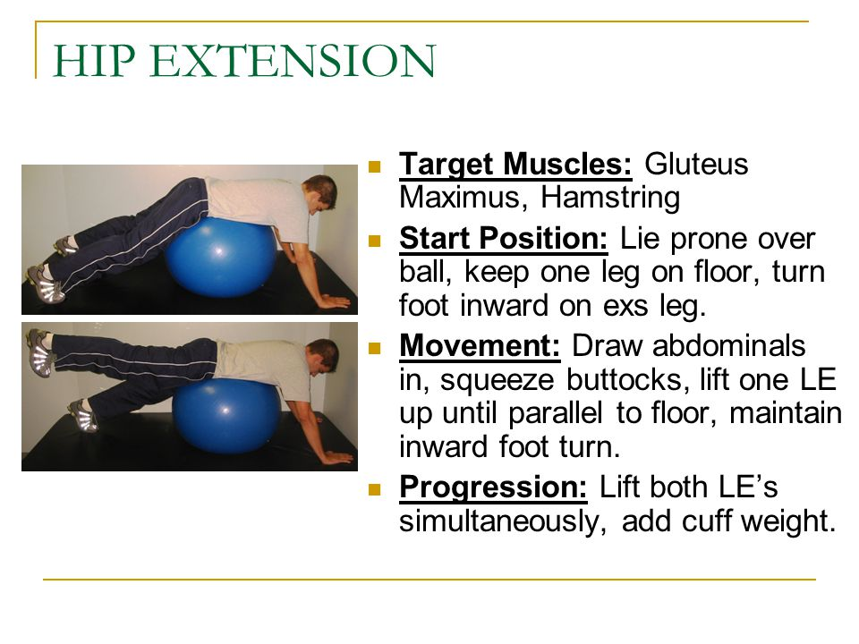 HIP EXTENSION Target Muscles: Gluteus Maximus, Hamstring