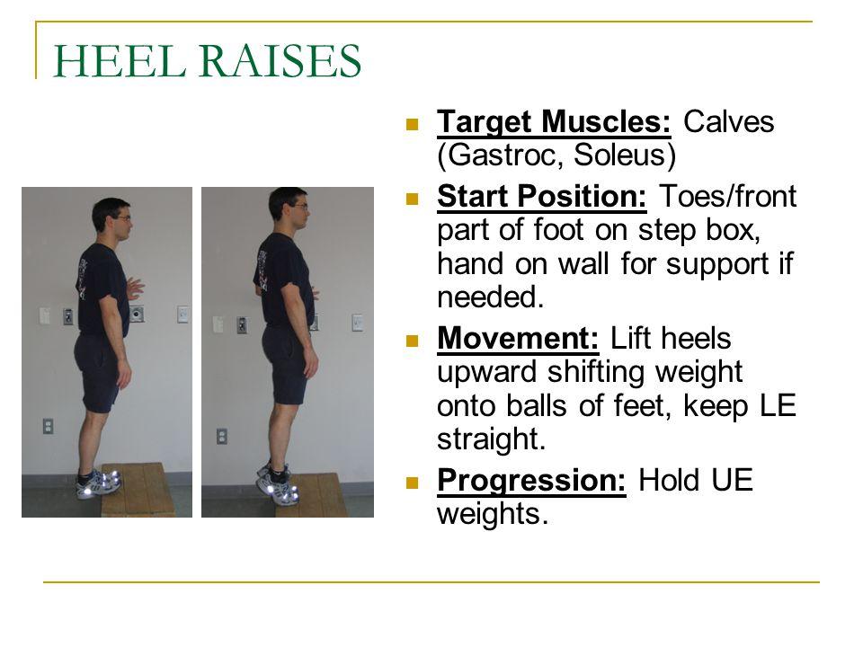 HEEL RAISES Target Muscles: Calves (Gastroc, Soleus)