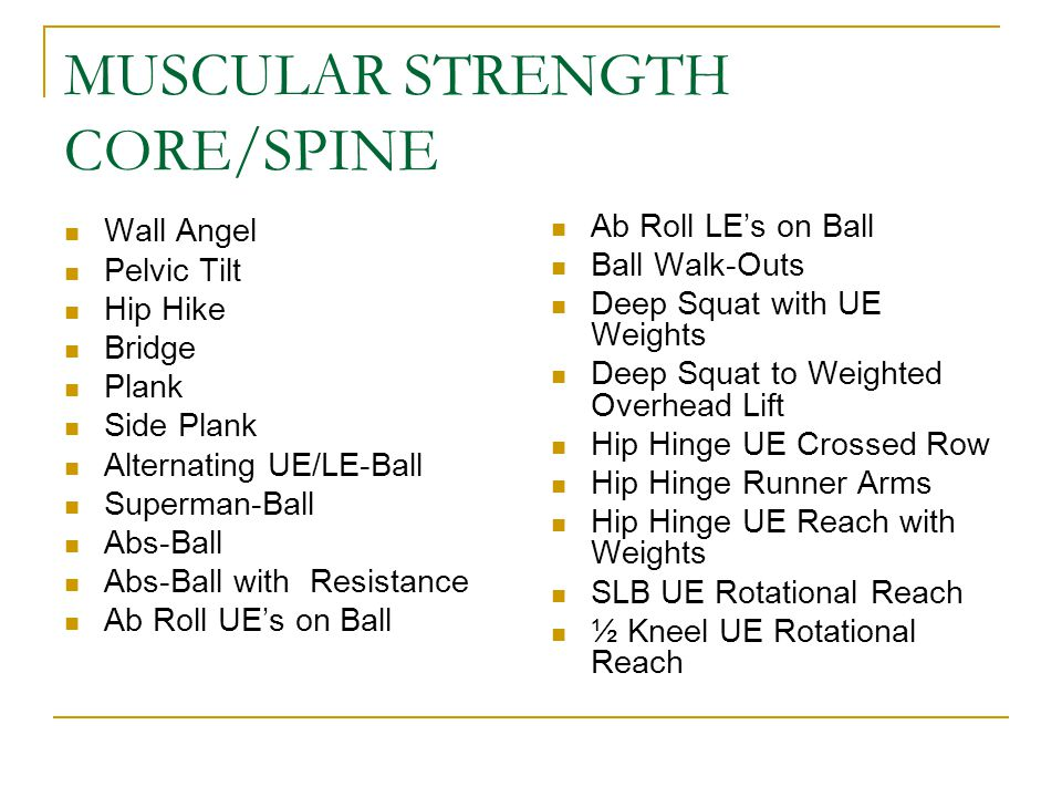MUSCULAR STRENGTH CORE/SPINE