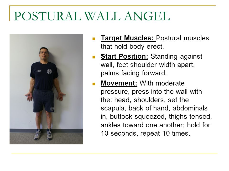 POSTURAL WALL ANGEL Target Muscles: Postural muscles that hold body erect.