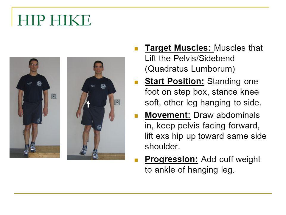 HIP HIKE Target Muscles: Muscles that Lift the Pelvis/Sidebend (Quadratus Lumborum)