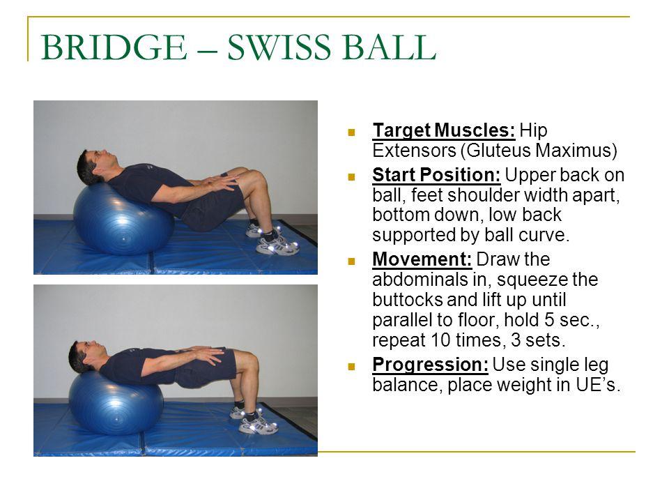 BRIDGE – SWISS BALL Target Muscles: Hip Extensors (Gluteus Maximus)