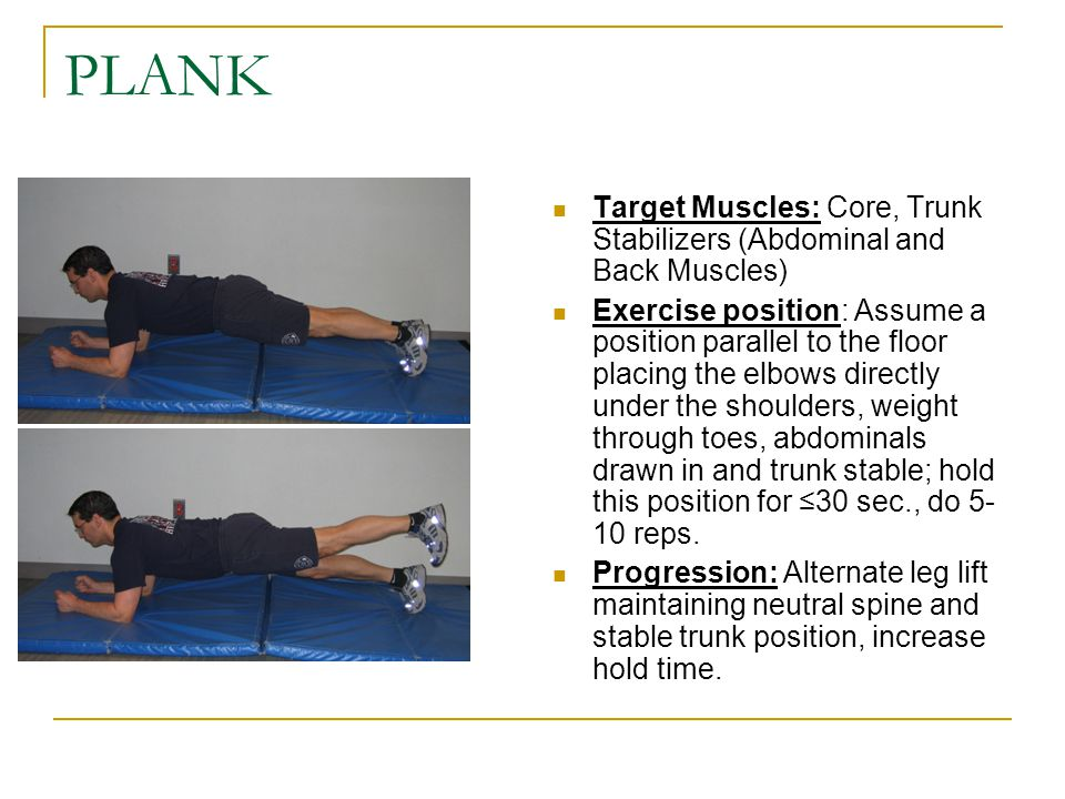 PLANK Target Muscles: Core, Trunk Stabilizers (Abdominal and Back Muscles)