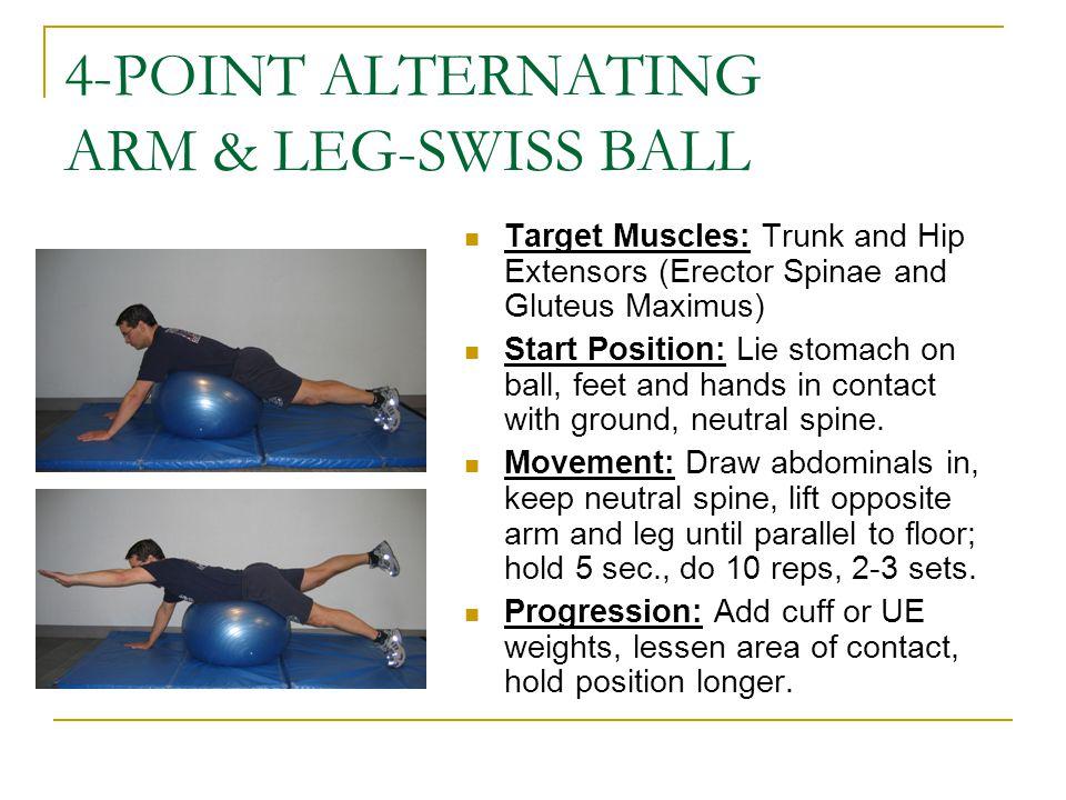 4-POINT ALTERNATING ARM & LEG-SWISS BALL