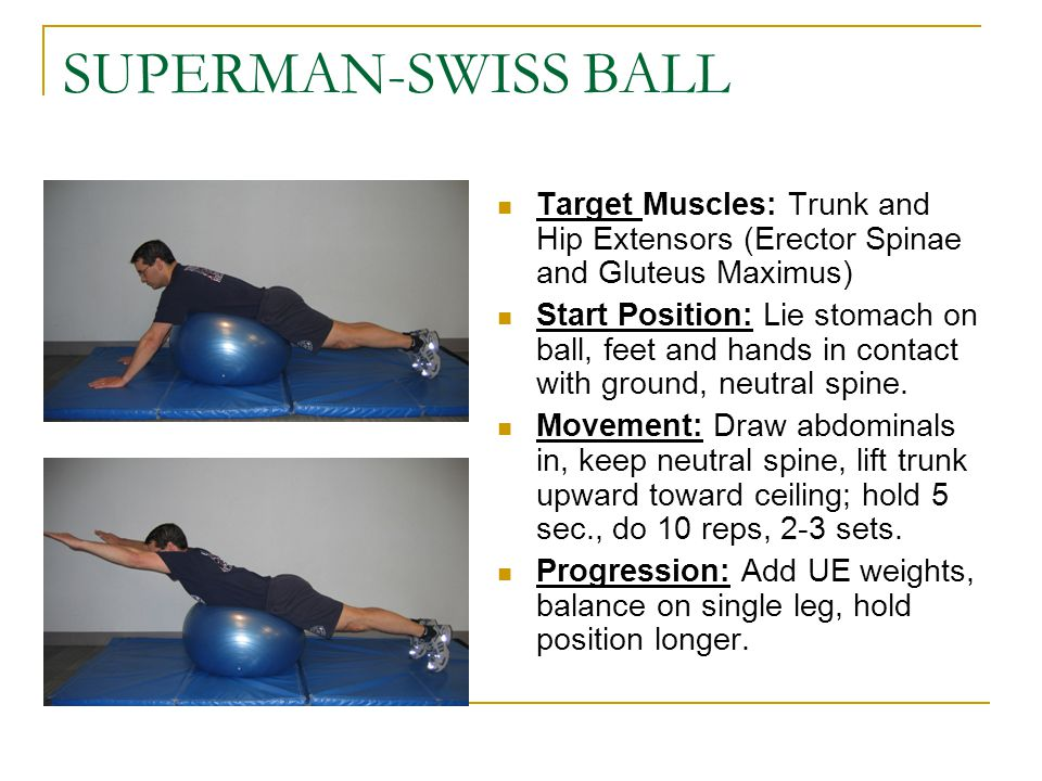 SUPERMAN-SWISS BALL Target Muscles: Trunk and Hip Extensors (Erector Spinae and Gluteus Maximus)