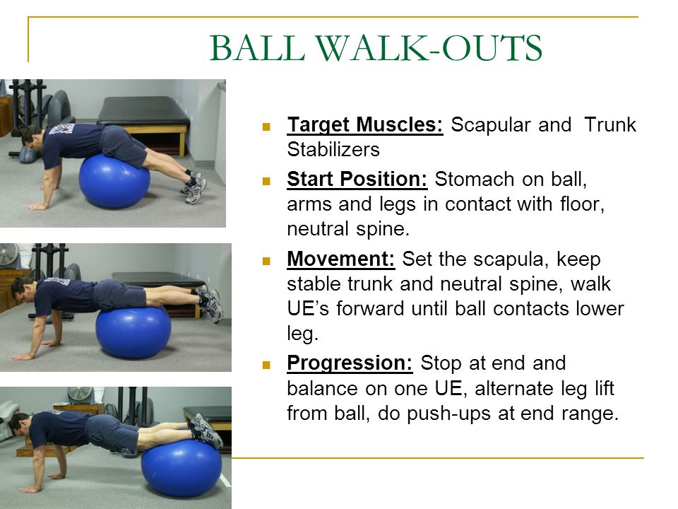 BALL WALK-OUTS Target Muscles: Scapular and Trunk Stabilizers
