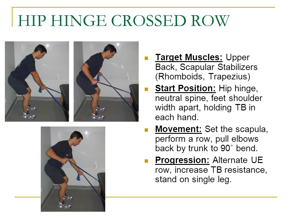 HIP HINGE CROSSED ROW Target Muscles: Upper Back, Scapular Stabilizers (Rhomboids, Trapezius)