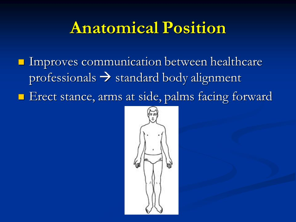 Anatomical Position Improves communication between healthcare professionals  standard body alignment.