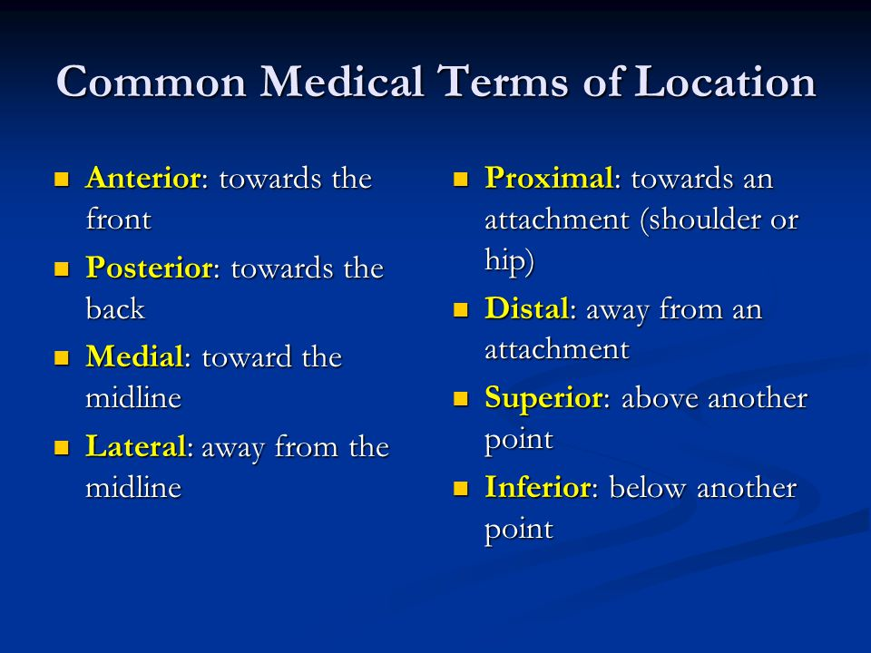 Common Medical Terms of Location