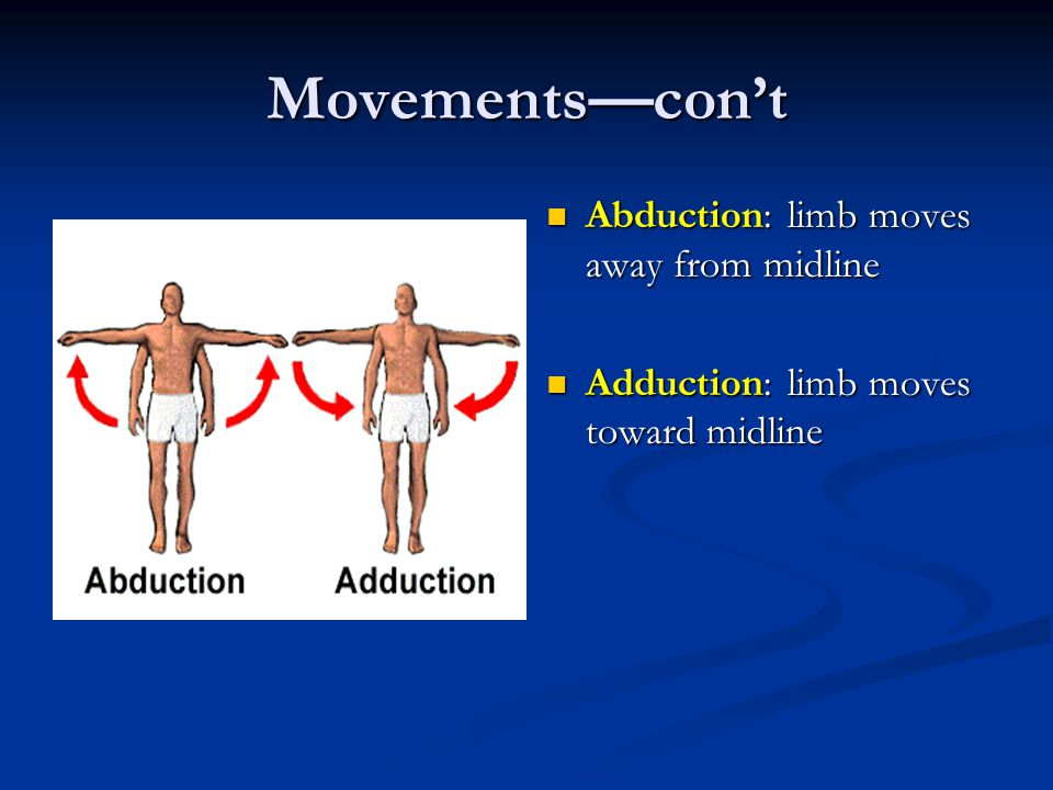 Movements—con't Abduction: limb moves away from midline
