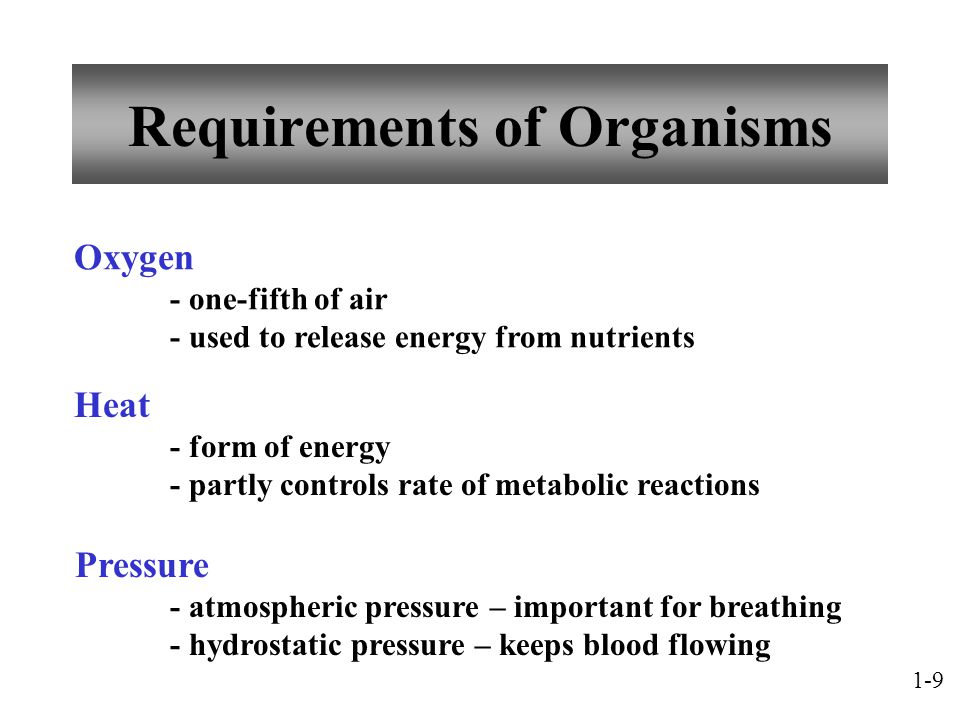 Requirements of Organisms