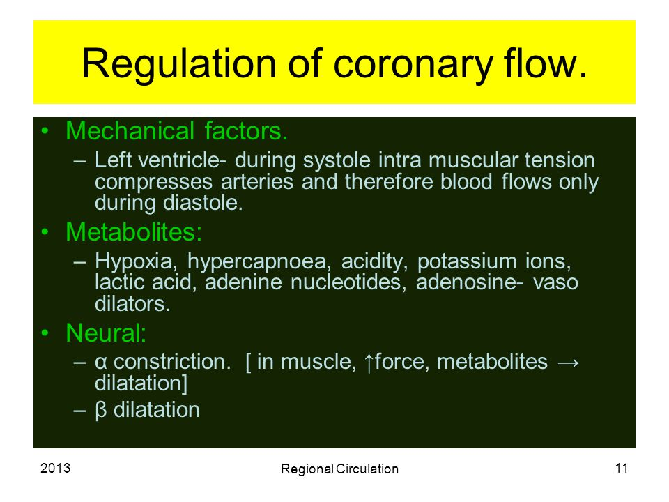 Regulation of coronary flow.