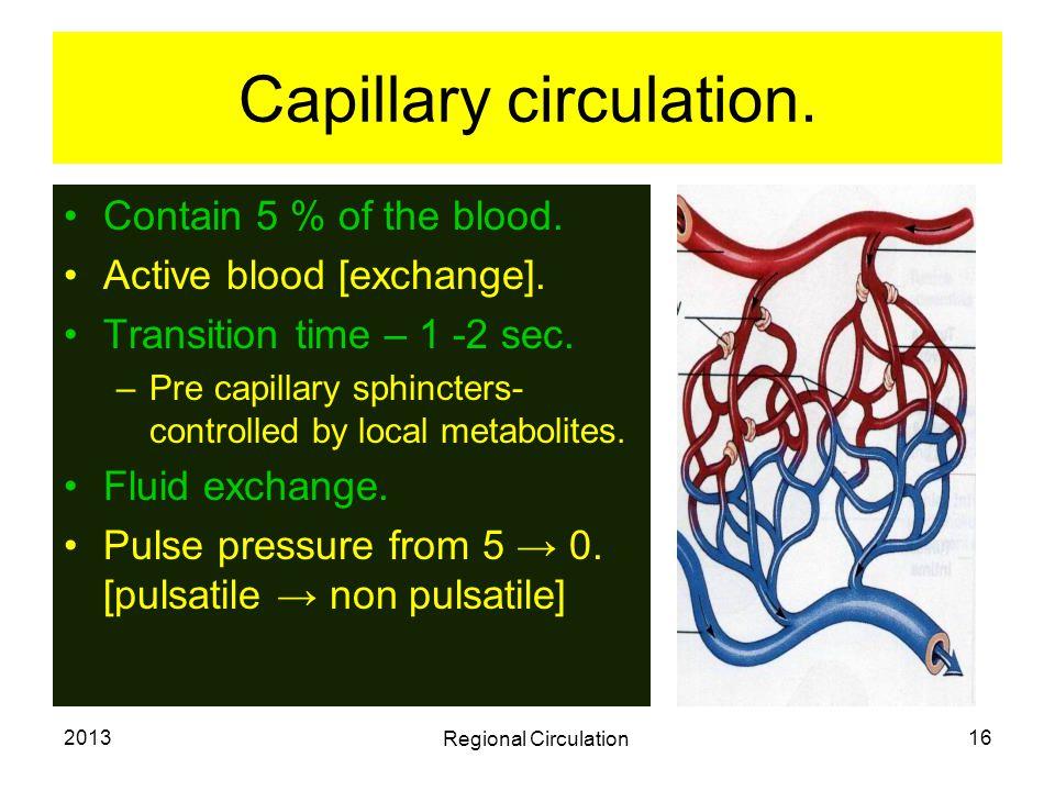 Capillary circulation.
