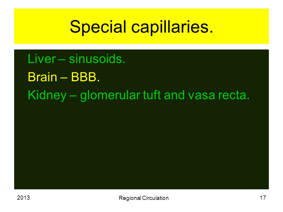 Special capillaries. Liver – sinusoids. Brain – BBB.