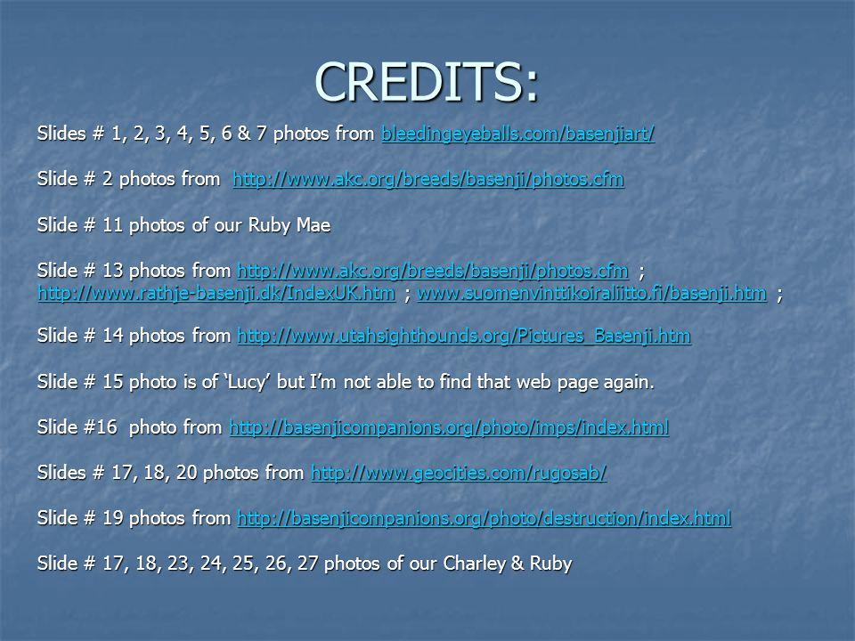 CREDITS: Slides # 1, 2, 3, 4, 5, 6 & 7 photos from bleedingeyeballs.com/basenjiart/