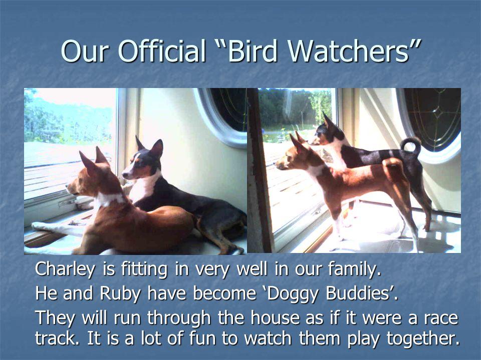 Our Official Bird Watchers