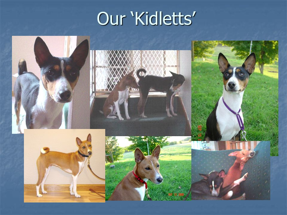 Our 'Kidletts'