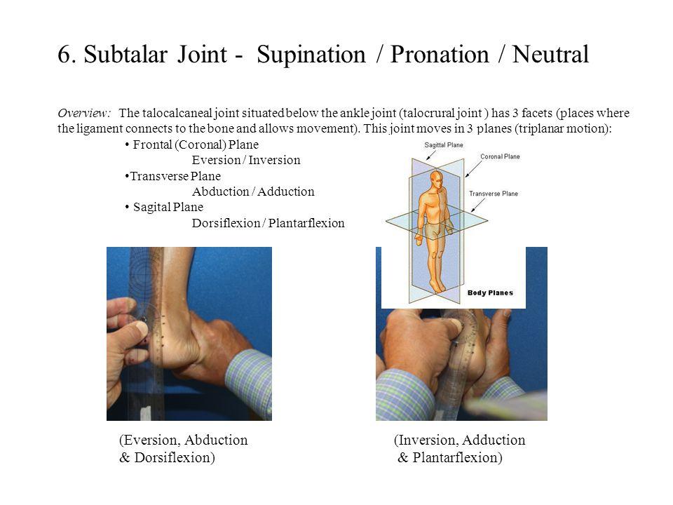 6. Subtalar Joint - Supination / Pronation / Neutral