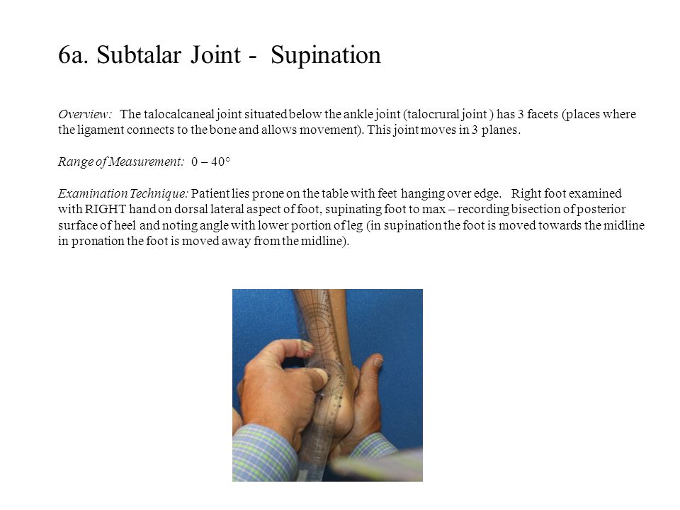 6a. Subtalar Joint - Supination