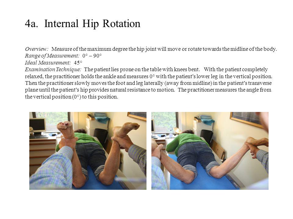 4a. Internal Hip Rotation