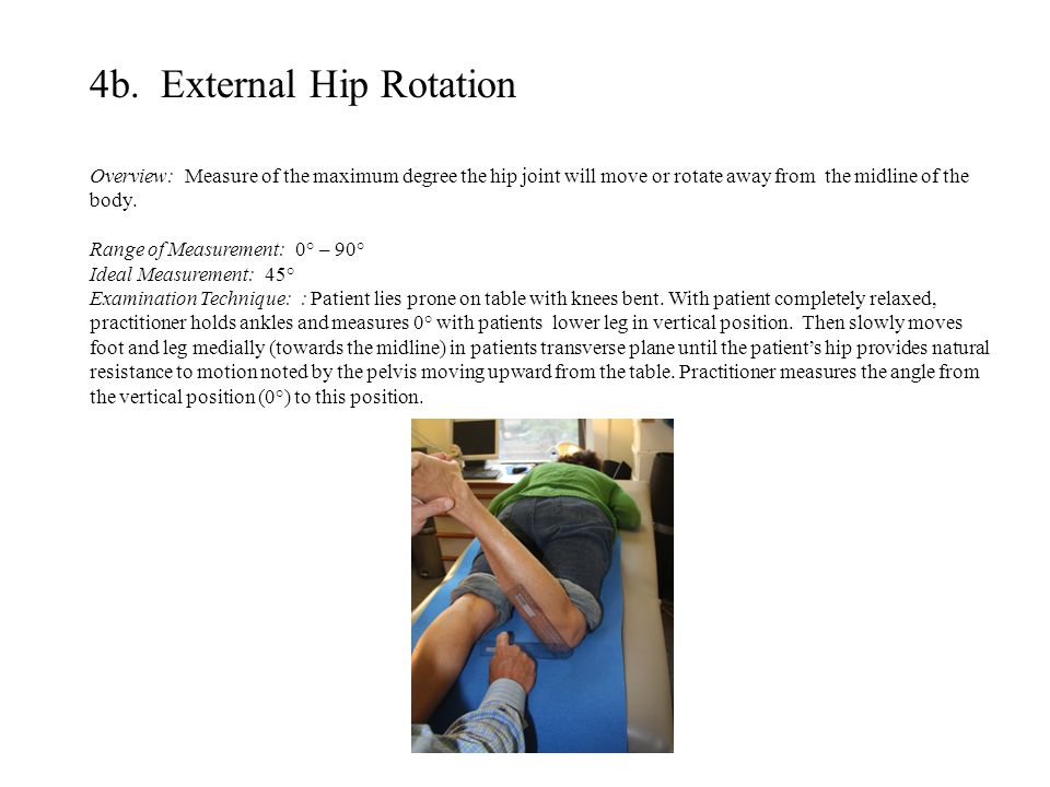 4b. External Hip Rotation