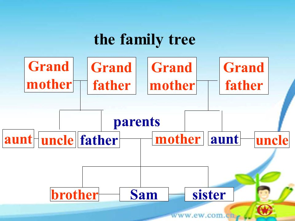 the family tree Grand mother Grand father Grand mother Grand father