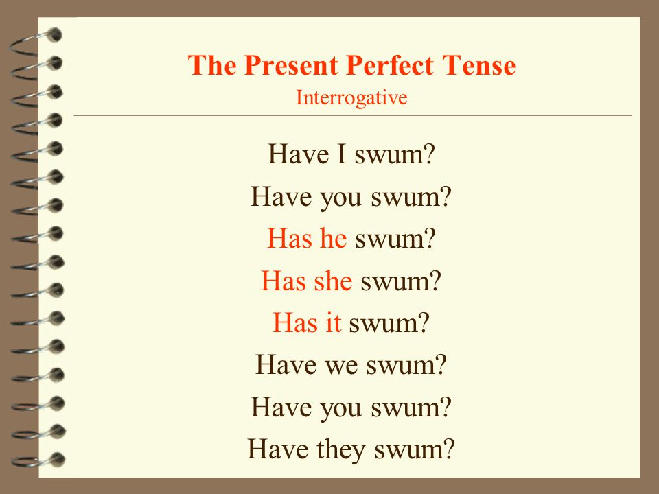 The Present Perfect Tense Interrogative