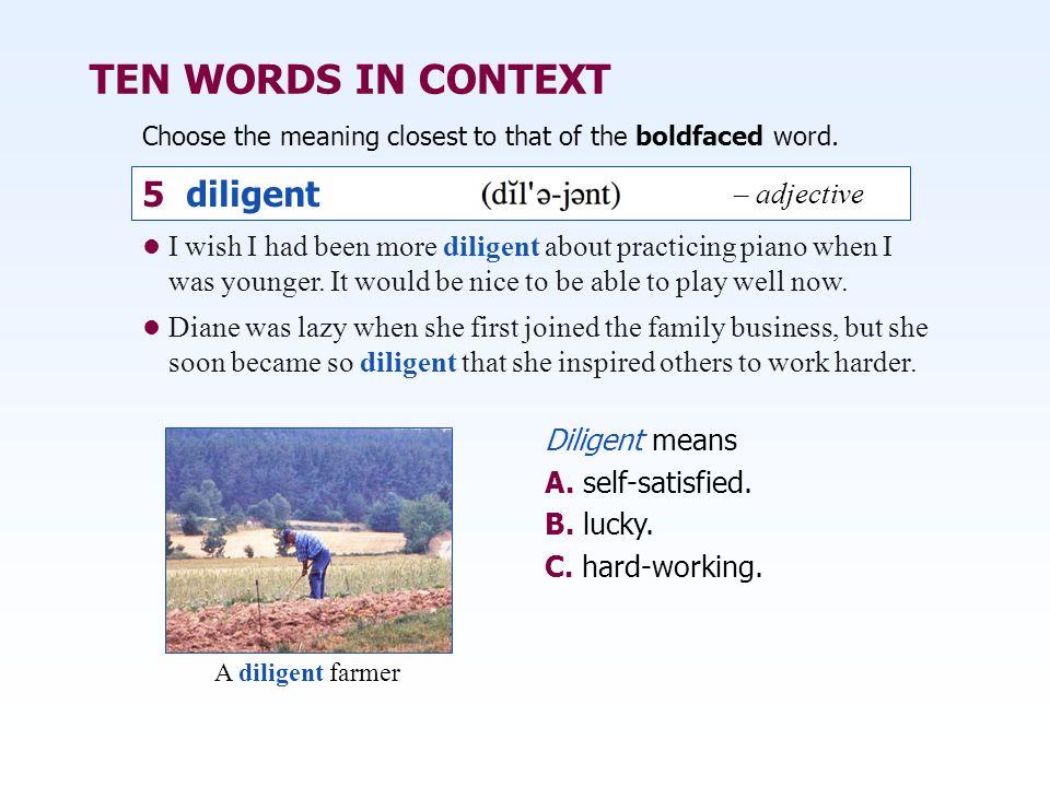 TEN WORDS IN CONTEXT 5 diligent – adjective