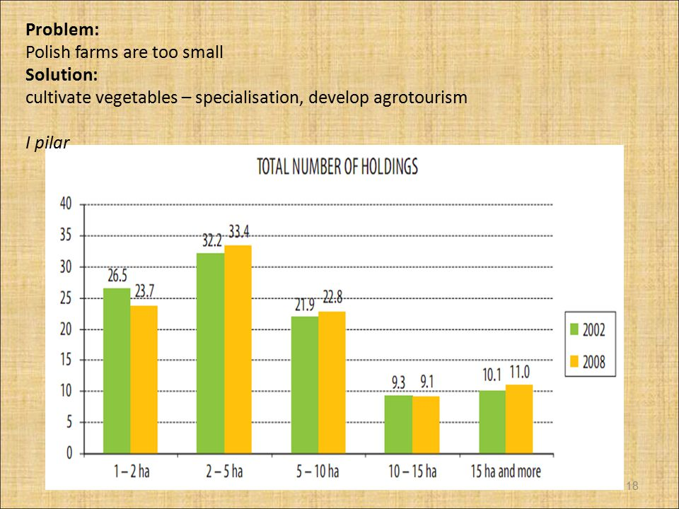 Problem: Polish farms are too small. Solution: cultivate vegetables – specialisation, develop agrotourism.