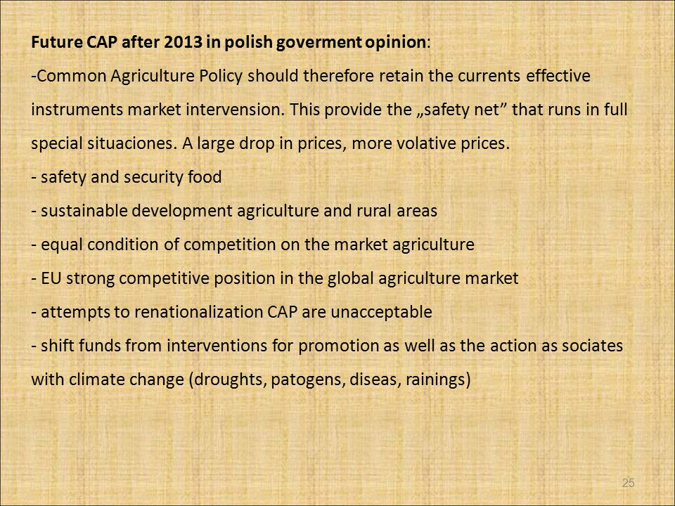 Future CAP after 2013 in polish goverment opinion: