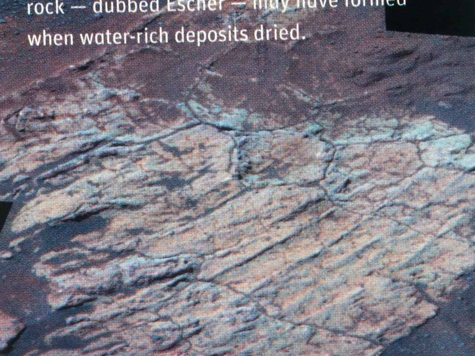 Mars mud cracks