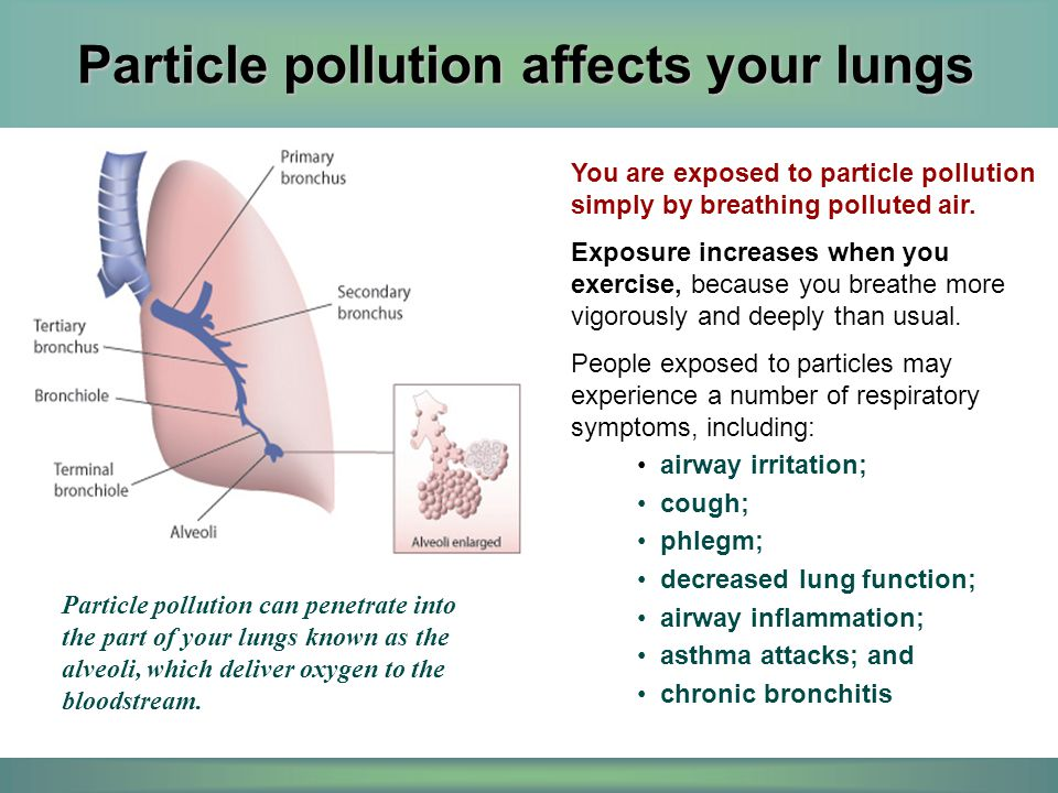 Particle pollution affects your lungs