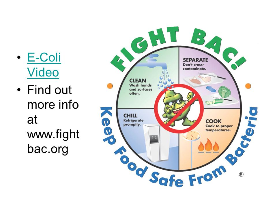 E-Coli Video Find out more info at www.fightbac.org