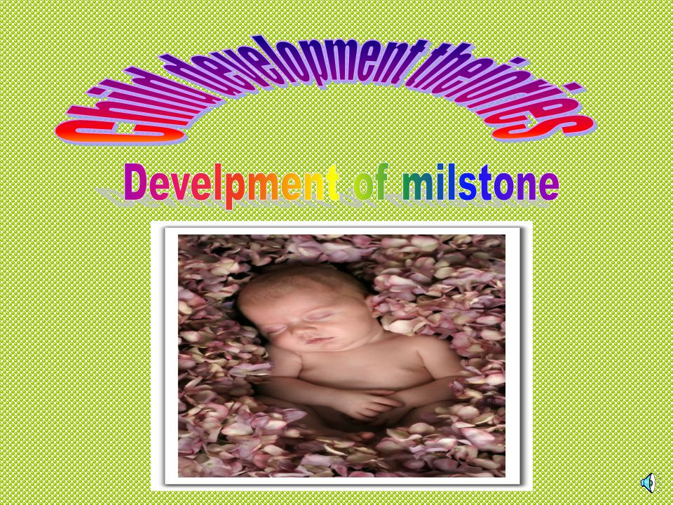 Child development theiories