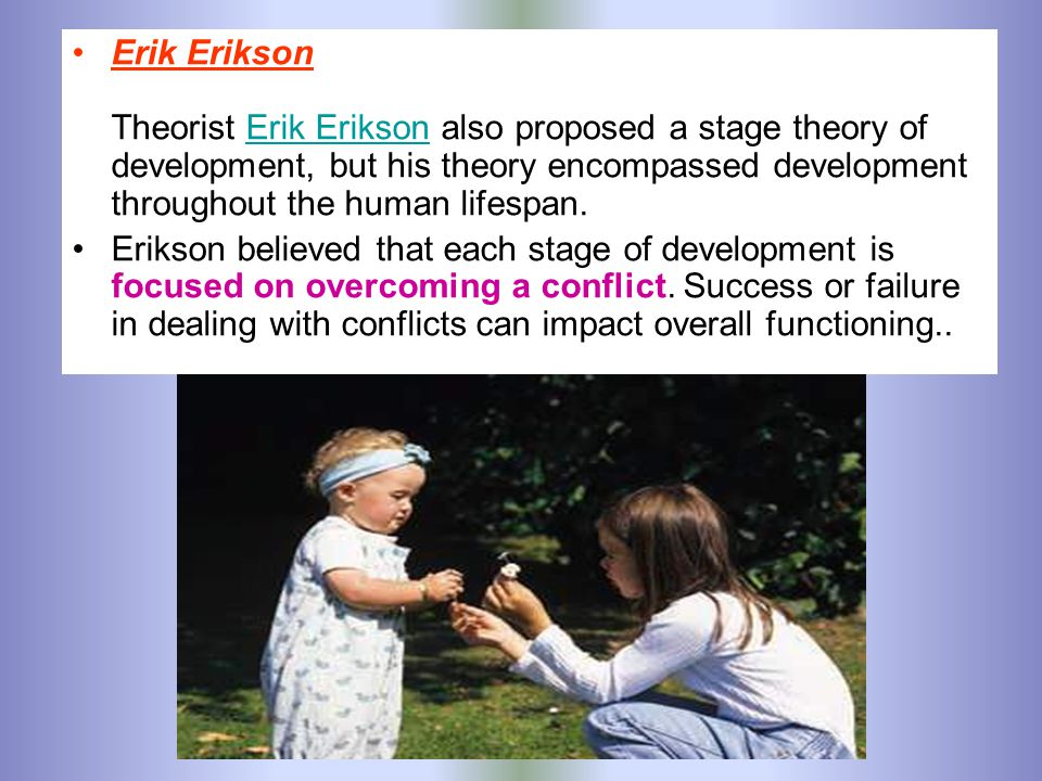 Erik Erikson Theorist Erik Erikson also proposed a stage theory of development, but his theory encompassed development throughout the human lifespan.