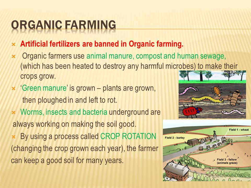 ORGANIC farming Artificial fertilizers are banned in Organic farming.