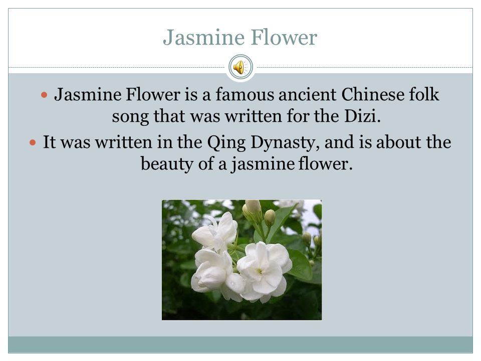 Jasmine Flower Jasmine Flower is a famous ancient Chinese folk song that was written for the Dizi.