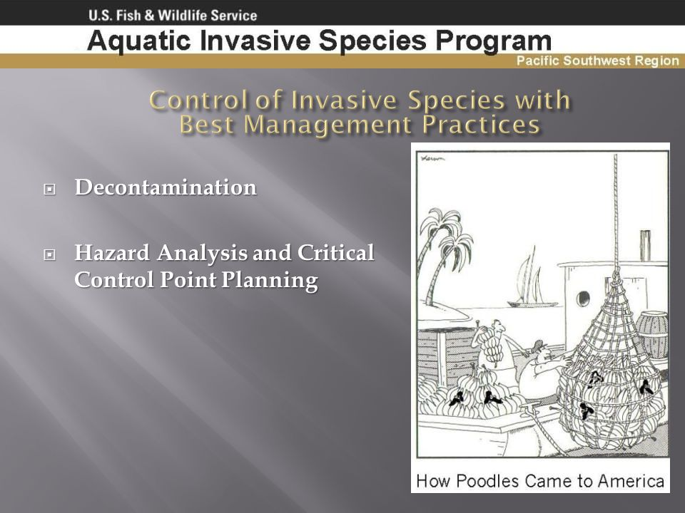 Control of Invasive Species with Best Management Practices