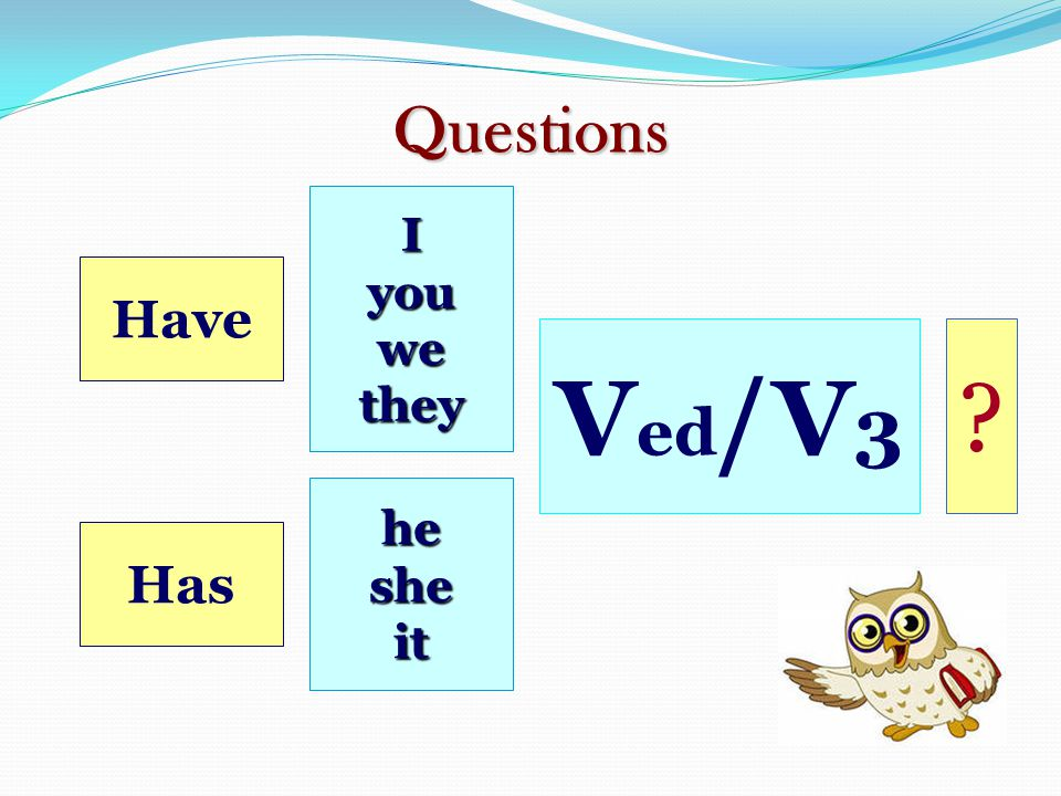 Questions I you we they Have Ved/ V3 he she it Has