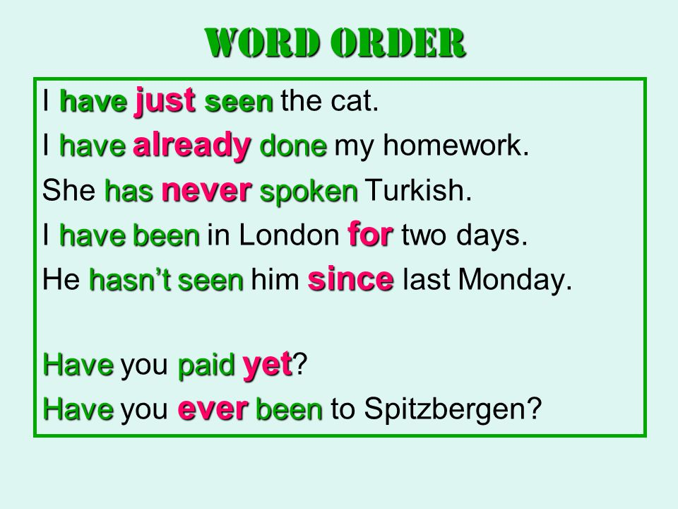 WORD ORDER I have just seen the cat. I have already done my homework.