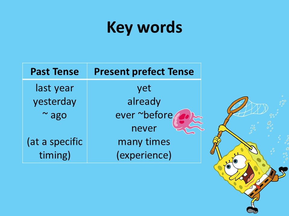 Key words Past Tense Present prefect Tense last year yesterday ~ ago