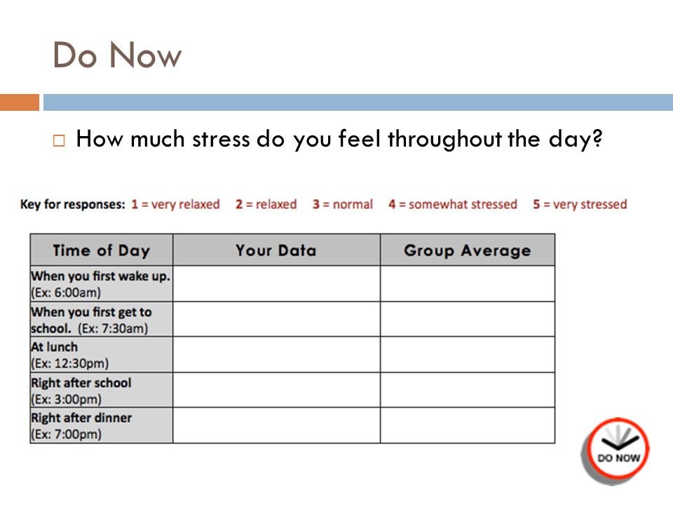 Do Now How much stress do you feel throughout the day