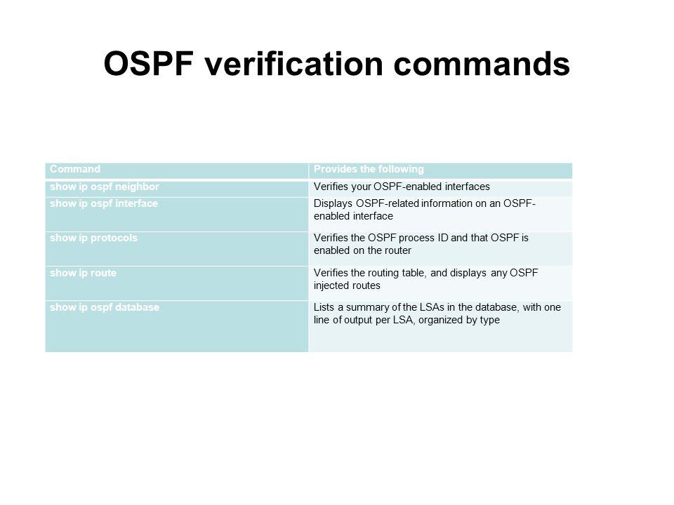 OSPF verification commands
