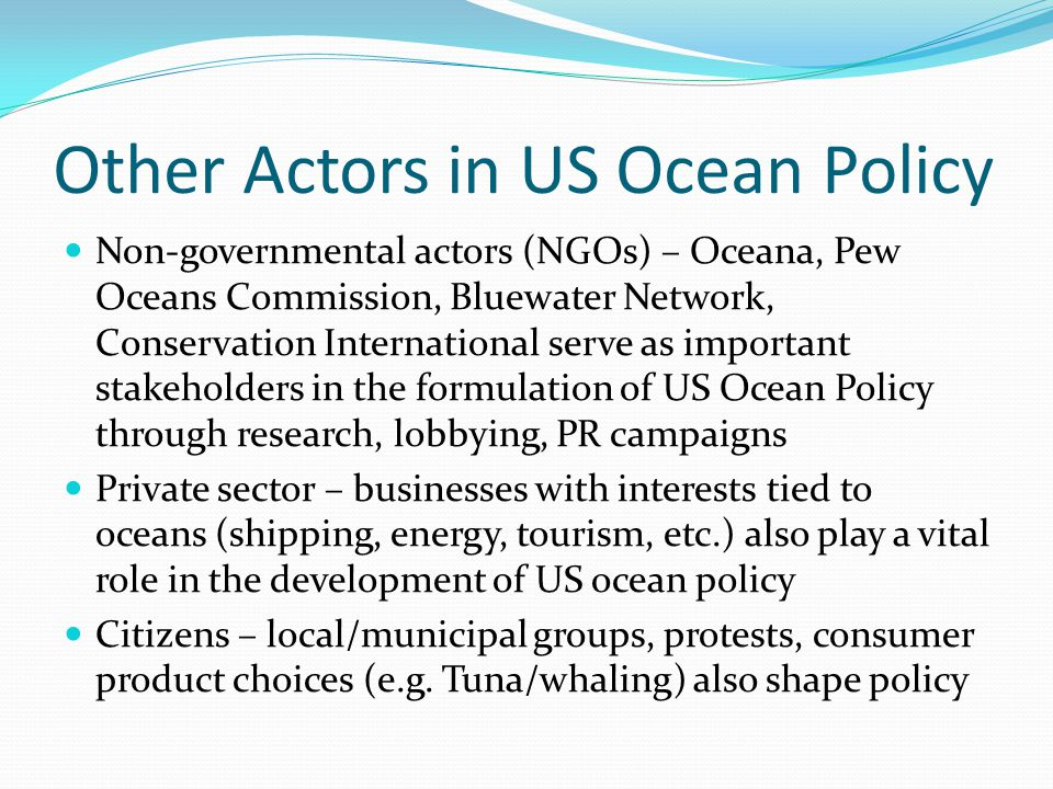 Other Actors in US Ocean Policy