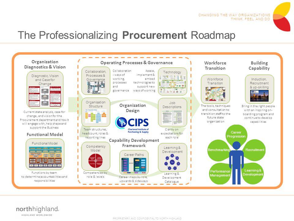 The Professionalizing Procurement Roadmap
