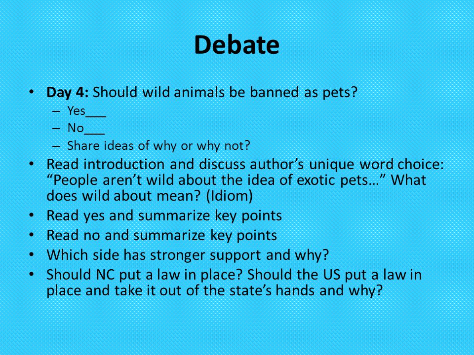Debate Day 4: Should wild animals be banned as pets