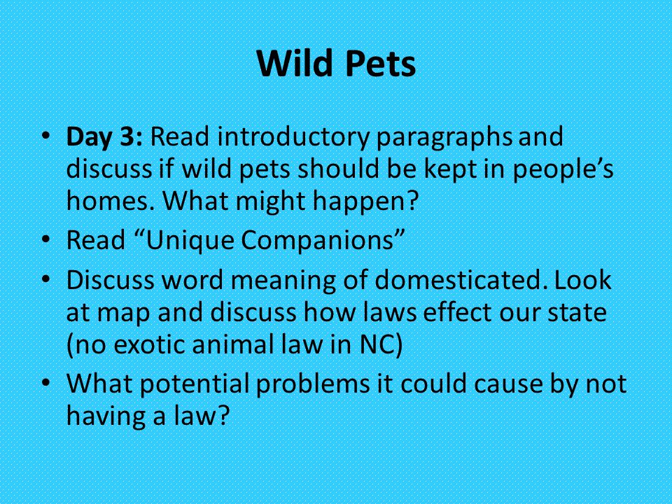 Wild Pets Day 3: Read introductory paragraphs and discuss if wild pets should be kept in people's homes. What might happen