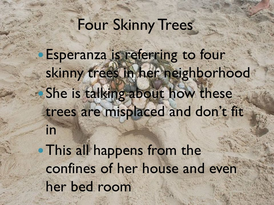 Four Skinny Trees Esperanza is referring to four skinny trees in her neighborhood.